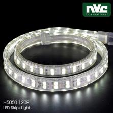Đèn LED dây 220V H5050/120P 12W/m